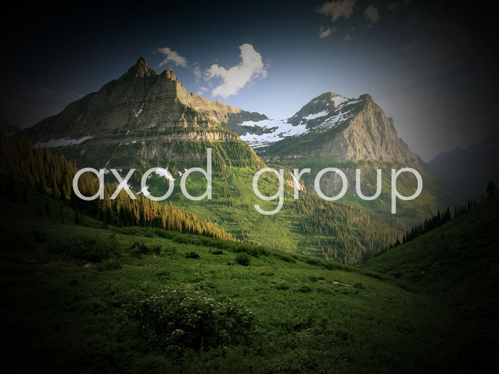 XOD GROUP